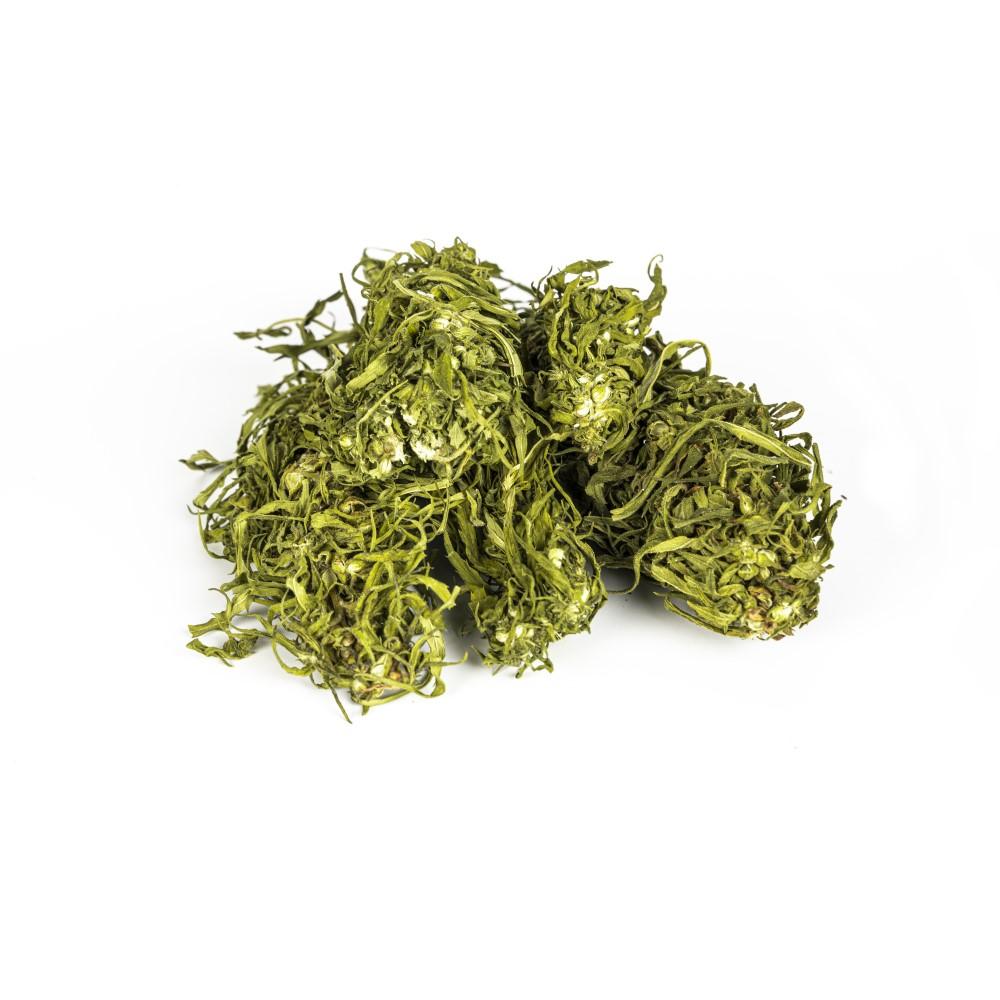 strong-hemp-premium-herbata-konopna-kwiatostany-2-sklep-cbd