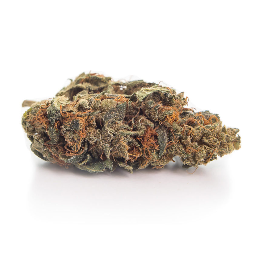 strong-hemp-susz-konopny-orange-skun-cbd-sklep