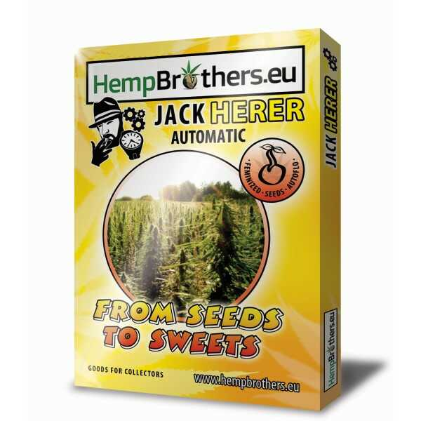 hemp-brothers-seeds-thc-nasiona-jack-herer-automatic-sklep-cbd-strong-hemp