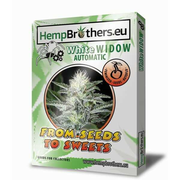hemp-brothers-seeds-thc-nasiona-white-widow-automatic-sklep-cbd-strong-hemp